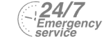 24/7 Emergency Service Pest Control in Buckhurst Hill, IG9. Call Now! 020 8166 9746